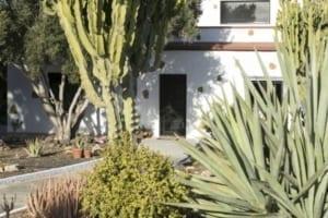 VillaVital tuin garden 6